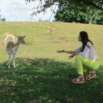 Campamento y viaje en inglés al condado de Kent Summer Camp ciervos